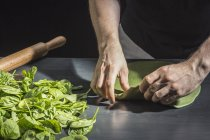 Cropped image of hands kneading green dough at table with basil leaves — Stock Photo
