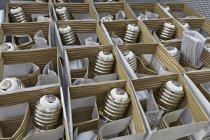 Caja de bombillas empaquetadas - foto de stock
