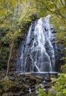 Красивый вид на водопад в лесу — стоковое фото