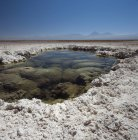 Landscape of Laguna Lejia at Atacama Desert, Chile — Stock Photo