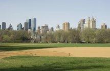 Horizonte de Nova Iorque de grande gramado no Central Park — Fotografia de Stock