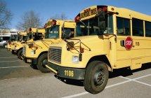 Linha de ônibus escolares estacionado no estacionamento — Fotografia de Stock