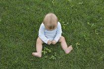 Bebé jugando con hojas en la hierba - foto de stock