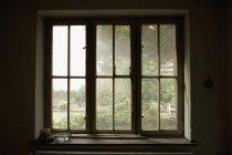 Blick durch schmutzige Fenster in den Garten — Stockfoto