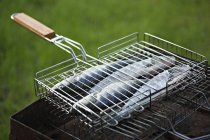 Raw fish on barbeque grill at lawn — Stock Photo
