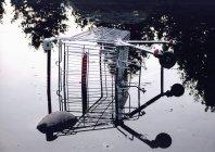 Скошений кошику в басейні воду — стокове фото