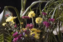 Bunch of flowers in front of exotic potted plants — Stock Photo