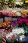Полный кадр цветочного киоска на рынке — стоковое фото