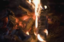 Крупним планом вид вогонь — стокове фото