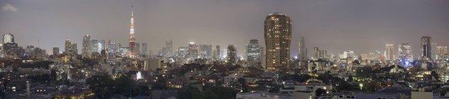 Foto panoramica del paesaggio urbano illuminato di Tokyo di notte — Foto stock