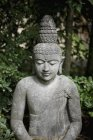 Stone statue of Buddha over green leaves — Stock Photo