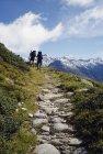 Задній вид на двох людей, похід на шлях гори — стокове фото