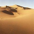 Paisaje de desierto con dunas en día soleado - foto de stock