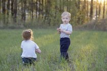 Un jeune frère et une jeune sœur dans un champ — Photo de stock