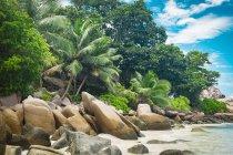 Alberi e rocce alla spiaggia tropicale contro il cielo — Foto stock