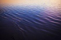 Tiro de quadro completo da superfície do mar onduladas durante o pôr do sol — Fotografia de Stock