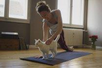 Femme souriante caressant chat blanc tout en pratiquant le yoga à la maison — Photo de stock