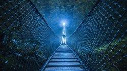 Загадочный силуэт на подвесном мосту в лесу ночью — стоковое фото