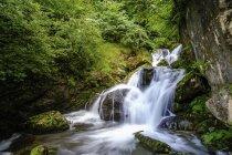 Тихий лесной водопад, Иббиц, Австрия — стоковое фото