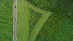 Беспилотная точка зрения на выращивание пышной зелени на фермах, Южный Тироль, Италия — стоковое фото