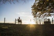 Menina de pé na cabra na fazenda rural ao pôr do sol — Fotografia de Stock