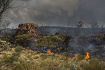 Wildfire burning, East McDonnell Ranges, Alice Springs, Northern Territory, Australia — Photo de stock
