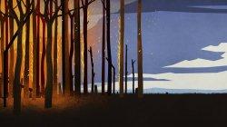 Fuoco della foresta che brucia alberi di notte — Foto stock