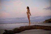 Carefree woman in bikini standing on driftwood on beach at dusk — Stock Photo