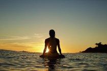Silueta de surfista femenina esperando en la tabla de surf en el océano, viendo atardecer, Sayulita, Nayarit, México - foto de stock