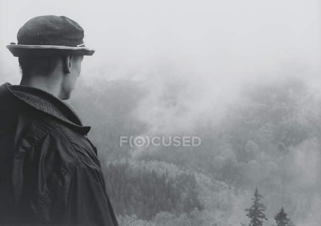 Вид сзади на человека, смотрящего на лесной пожар — стоковое фото