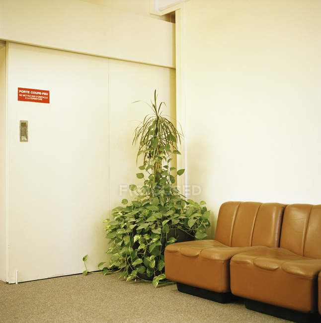 Interior of waiting lounge with potted plant and coach at hall — Stock Photo