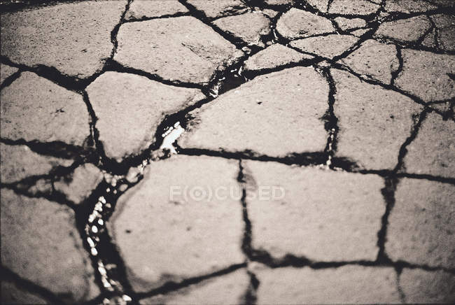 Close up view of cracked pavement pieces — Stock Photo