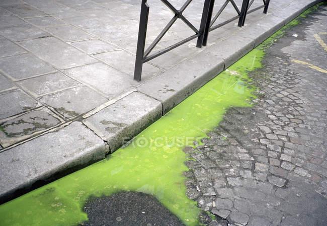 Green liquid on city street pavement — Stock Photo