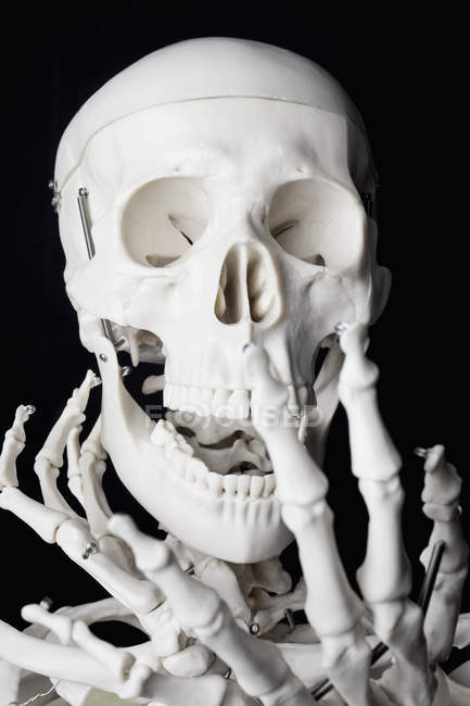 Close up view of human skeleton with arms near skull — Stock Photo
