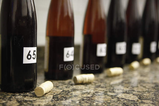 Row of numbered uncorked bottles of wine set up for wine tasting — Stock Photo