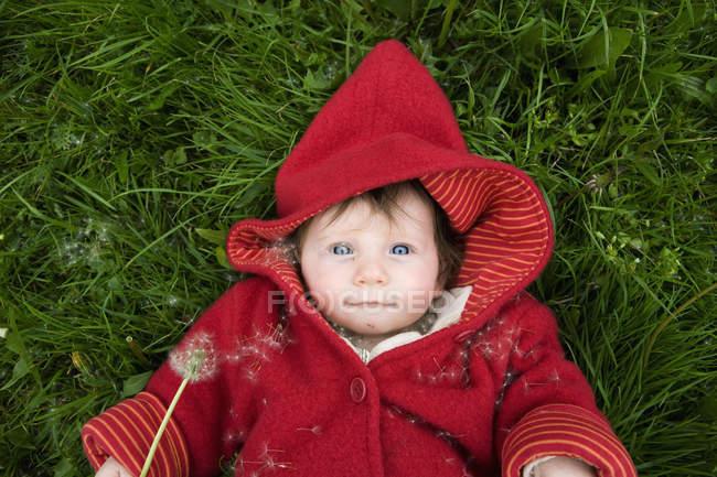 Ein Baby mit Löwenzahn — Stockfoto
