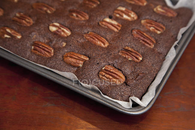 Close up view of baker tray with chocolate cake with nuts — Stock Photo