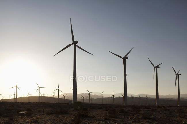 Silhouettes of wind turbines in desert landscape — Stock Photo