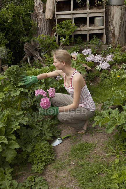 Eine Frau, die in ihrem Hinterhof gärtnert, Blick aus der Vogelperspektive — Stockfoto