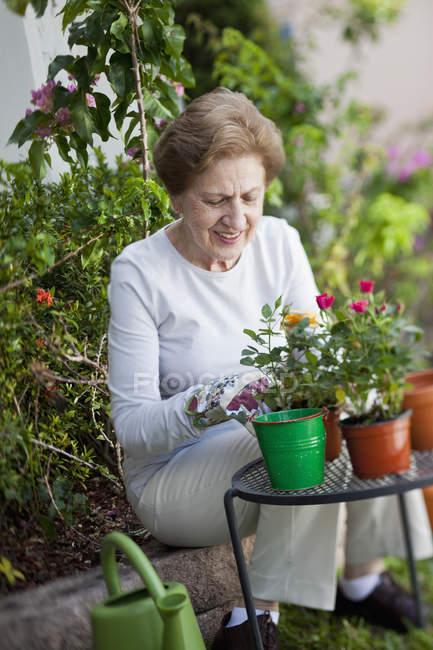 Focused senior woman gardening outdoors — Stock Photo