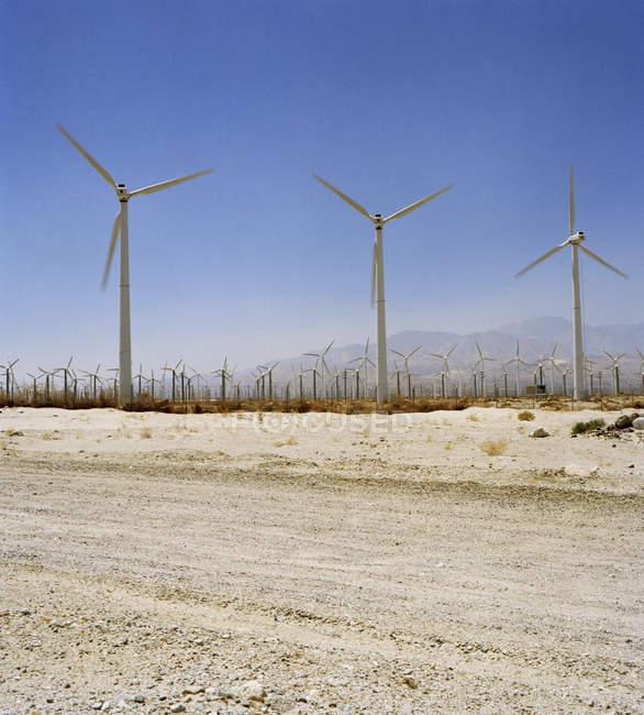 Arid landscape with wind turbines on sunny day — Stock Photo
