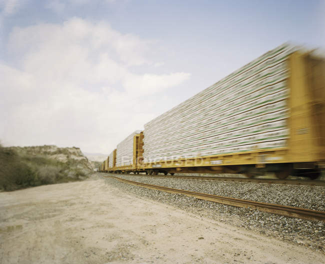 Freight train in motion at summer nature — Stock Photo
