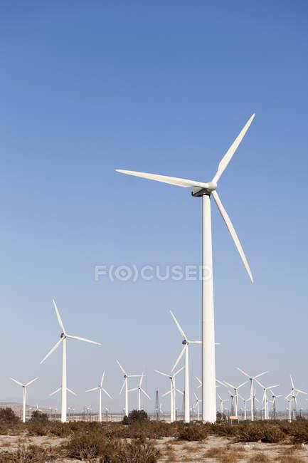 Wind turbines in desert landscape — Stock Photo