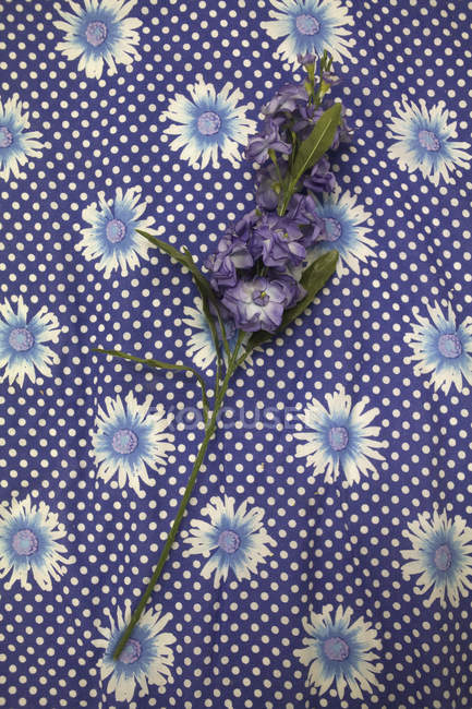 Purple flowers stem on floral fabric — Stock Photo