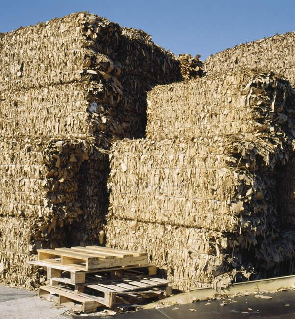 Paquets de carton ensoleillés pour le recyclage — Photo de stock