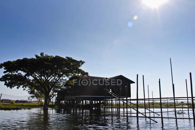 Stelzenhaus mit Baum vor blauem Himmel, Inle-See, Birma — Stockfoto