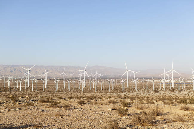 Rows of wind turbines in desert landscape — Stock Photo