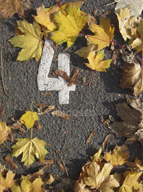 Листья, окружающие число 4 окрашены на асфальте — стоковое фото