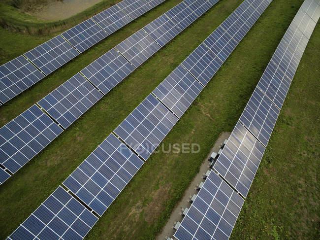 Rows of solar panels on grassy field — Stock Photo