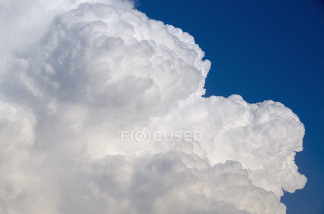 Crop volume white cloud in blue sky — Stock Photo
